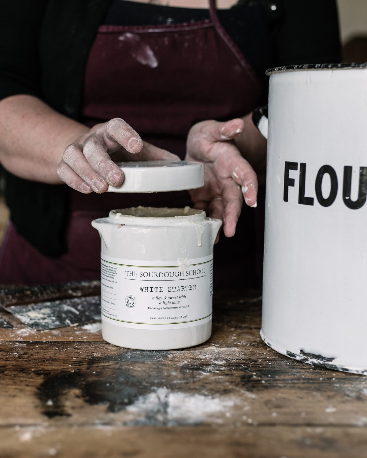 How to Refresh a White Starter (Roller Milled Flour)