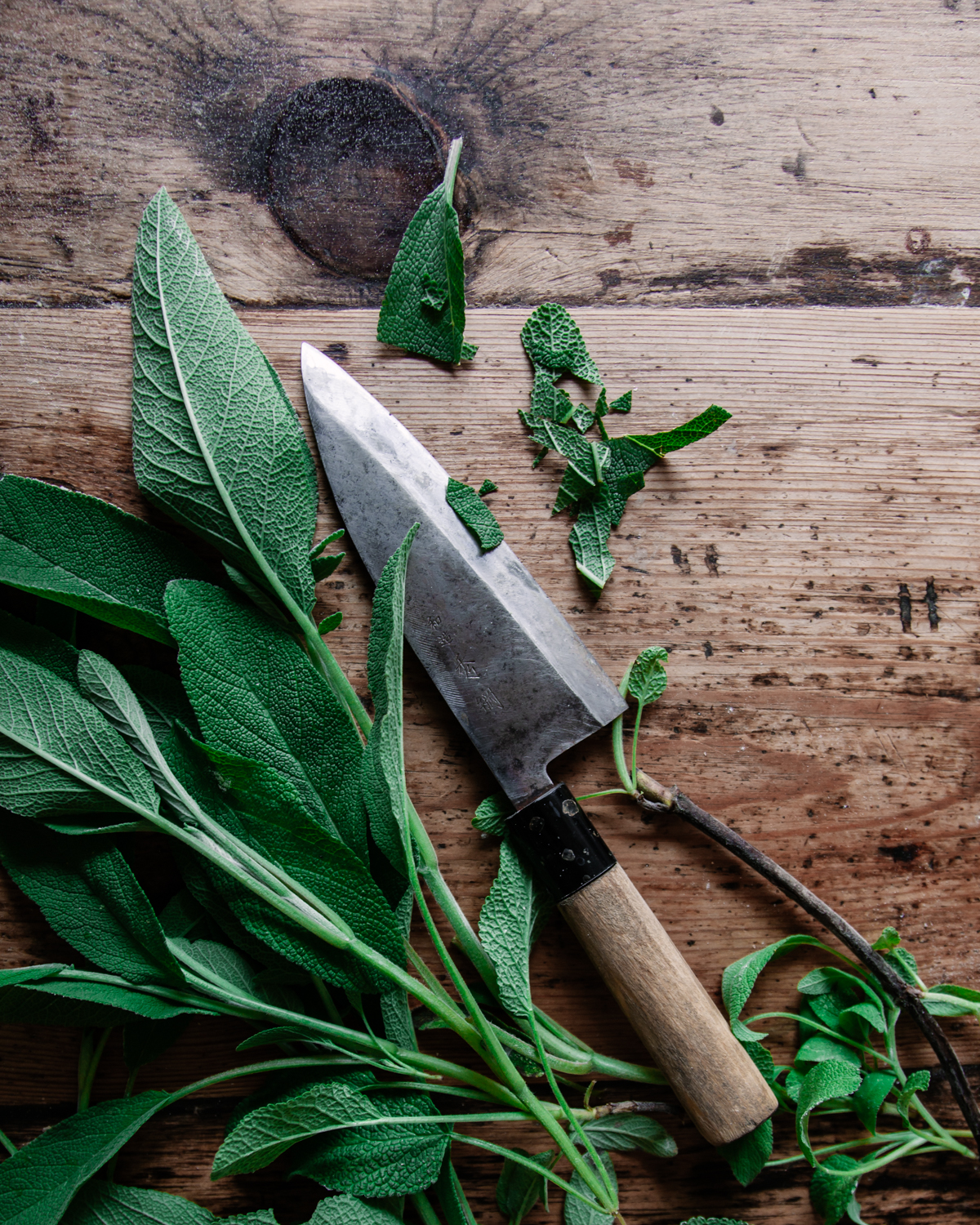 A list of herbs to use in your botanical blends